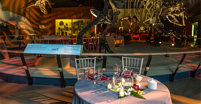 Plan A Wedding That Will Make History Guests Can Interact With Fascinating Exhibits As They Dine And Dance Among The Dinosaurs Host Tail Hour